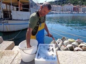 Rok, Fischer und Koch in einer Person, säubert morgens seinen Fang, den er abends selbst zubereitet. – Foto: Dieter Warnick