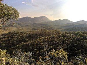 Caraça liegt inmitten eines Biosphären-Reservats mit üppiger Flora und Fauna.