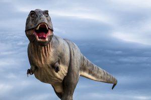 Auge in Auge mit Tyrannosaurus Rex – das ist ab 25. August im neuen Dinosaurier-Freilichtmuseum Altmühltal in Denkendorf möglich. - Foto: Naturpark Altmühltal