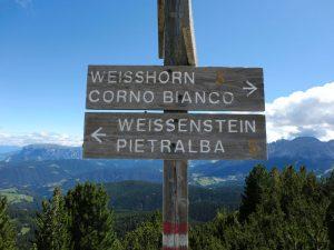 Wohin des Wegs? Sowohl der Gipfel des Weißhorns als auch der Wallfahrtsort Maria Weißenstein sind lohnende Ziele. - Foto: Dieter Warnick