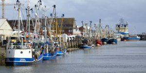 Ein farbenprächtiges Bild zeigt sich im Hafen von Cuxhaven. - Foto: Nordseeheilbad Cuxhaven