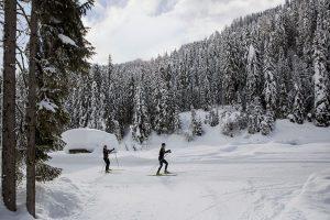 Weitwanderroute für Langläufer: Auf 114 Kilometern in fünf oder auf 176 Kilometern in acht Tagen führt die Trans Dolomiti durch die naturbelassene Osttiroler Winterlandschaft bis nach Südtirol. Der Gepäcktransport ist dabei inklusive. - Foto: Bernd Heinzlmeier/Monika Höfle