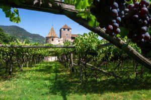 Auf Schloss Maretsch in Bozen findet Mitte März die Bozner Weinkost statt. - Foto: Verkehrsamt der Stadt Bozen