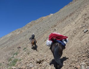 Trekking mit Pferd.