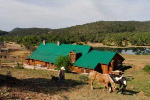 Die Guest Ranch Cherry Creek Lodge bietet auch das rustikale Flair einer historischen Rinderfarm. - Foto: Arizona Office of Tourism