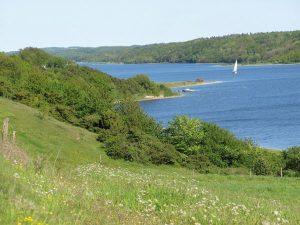 Idyllisch zieht sich die Panoramaroute am Mariager Fjord entlang. - Foto: Visit Mariagerfjord