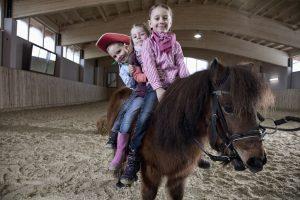 Auch Pferdefreunde kommen auf ihre Kosten.