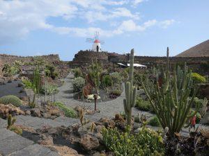 Im Jardín de Cactus, kreisförmig angelegt und kunstvoll gestaltet, findet man über 7.200 Exemplare von mehr als 1.100 Kaktusarten.
