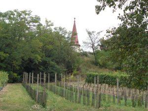 Einmalig: Am Galgenberg in Wildendürnbach steht ein Kirchturm ohne Kirche. - Foto: Dieter Warnick