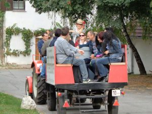 Eine Traktorfahrt durch die engen Kellergassen und die lieblichen Weinberge ist eine lustige Angelegenheit. - Foto: Dieter Warnick
