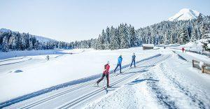 Langlaufen verbindet Sport mit Naturgenuss. Foto: langlaufen.at