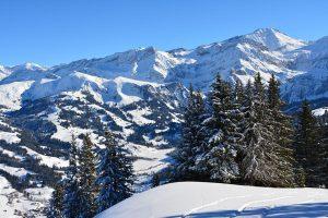 Traumhafte Winterlandschaft rund um Gstaad. - Foto: Irma Oerhli / Gstaad Saanenland Tourismus