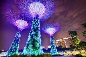 Singapur, Gadens by the Bay - einfach magisch. Foto: pixabay.com | suyashdixit (CC0)