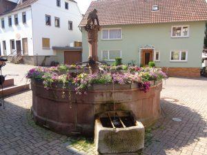 Külsheim I: Juden wurden nicht selten in Brunnen wie diesen untergetaucht damit auf das Übelste gefoltert – eine frühe Form des Waterboardings. - Foto: Dieter Warnick
