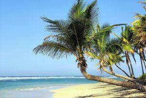 Kubas Strände sind ein Traum. Foto: pixabay.com | DEZALB (CC0)