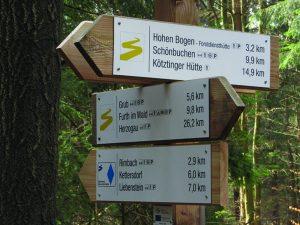 Der Goldsteig bietet grenzenlosen Wandergenuss. – Foto: Tourismusverband Ostbayern
