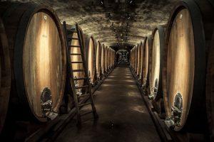 Tief im Keller, entlang weiterläufiger, schmaler Gänge, lagern edle Frankenweine in riesigen Holzfässern. – Foto: www.bayern.by / Bernhard Huber