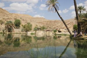 Ein Platz zum Träumen - Wadi Bani Khaled. - Foto: Michael Stephan