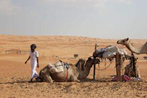 Ein Beduinen-Camp in der Wüste. - Foto: Michael Stephan
