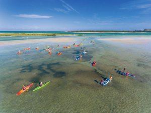 Kajakfahren auf Caladesi Island – ein Hochgenuss. – Foto: visitstpeteclearwater.com | Steven P. Widoff