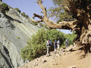 Die Wanderwege führen über Pfade der Bauern, entlang kleiner Wasserläufe, an Apfel- und Wallnussbäumen und mit Kiefern bewachsenen Hängen vorbei. Foto: ©weltweitwandern.com