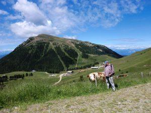 In Obereggen, einem Eldorado für Wintersportler, gibt es Wanderwege zu Hauf. Das Bild zeigt den Zanggen. - Foto: Christine Schiegl