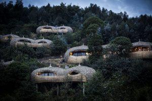 Baumhaus in Ruanda. – Foto: Bisate Lodge