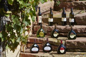Die Vielfalt an Weinen aus dem Taubertal ist riesengroß. – Foto: Tourismusverband Liebliches Taubertal / Peter Frischmuth