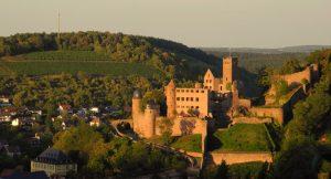 Der Kaffelstein auf der Gemarkung Kreuzwertheim schräg gegenüber der Wertheimer Burg und ist eine der letzten klassischen Steillagen der Region. Heute bewirtschaftet das Weingut Alte Grafschaft den Weinberg in Handarbeit. – Foto: Weingut Alte Grafschaft