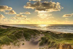 Bildrechte: Flickr golden north sea beach, Denmark magnetismus CC BY 2.0 Bestimmte Rechte vorbehalten