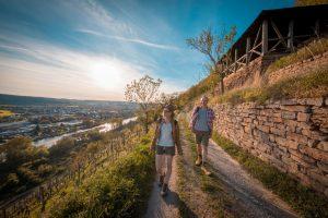 Der Fränkische Rotweinweg kann in sechs Etappen erwandert werden. – Foto: Churfranken e.V. / News Verlag