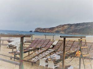 Auf langen Holzgestellen am Strand werden die Fische getrocknet. Die Arbeit und der Verkauf liegt in den Händen der Fischerfrauen. Getrockneter Fisch, Bacalhau, ist eine portugiesische Nationalspeise.
