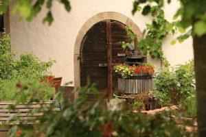 Irgendetwas rund um die Klostermühle blüht immer. – Foto: Michael Meyer Photographie