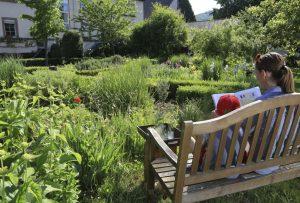 Stillleben im Kräutergarten. – Foto: Michael Meyer Photographie
