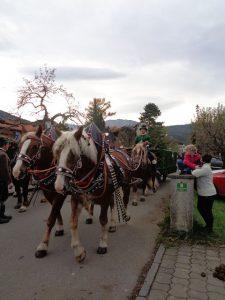Pferdegespann auf dem Weg zum Kloster. - Foto: Dieter Warnick