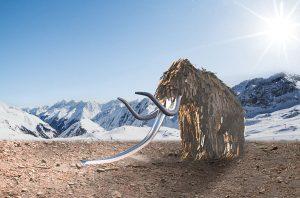Dieses beeindruckende Mammut aus Holz führt direkt in die Eiszeit. – Foto: Andre Schönherr / Naturidea