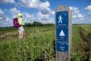 Der neue Weg durch Tøndermarsch bietet Wanderern jede Menge neue Eindrücke. – Foto: Ulrik Pedersen