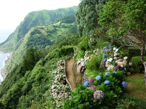 Atemberaubende Landschaft - São Miguel.