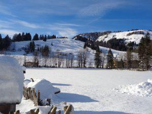 Das Pistennetz in Hochfilzen ist sehr klein. Dafür haben die umliegenden Skiorte um so mehr zu bieten. - Foto: Dieter Warnick
