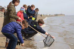 Auch für Kinder gibt es während der Schweinswal-Tage jede Menge zu tun, beispielsweise eine Entdeckungsreise an den Jadebusen. - Foto: Björn Lubbe | WZ Bilddienst, Wilhelmshaven