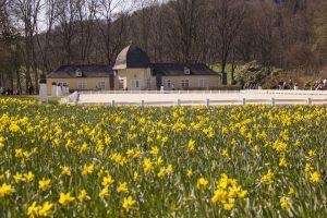 Früher diente die Orangerie von Schloss Berleburg in den Sommermonaten als Lusthäuschen für kleinere Feste oder Feiern im Park. Heute finden in dem beliebten Gebäude Trauungen statt. – Foto: BLB-Tourismus GmbH