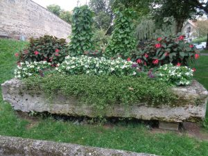 Dieser Blumentrog datiert aus dem Jahr 1497; er besteht aus Tuffstein, das einzige Gestein, das in der Lage ist zu wachsen. – Foto: Dieter Warnick.