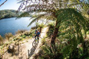 Auf dem Blue Mountain Bike Trail. – Foto: Tim Bardsley-Smith