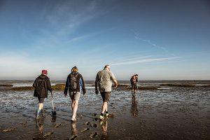 Die Küstenorte an der niedersächsischen Nordsee bieten im Herbst ein prall gefülltes Programm für Naturfreunde an. - Foto: Andrea Ullius / Die Nordsee GmbH
