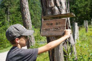 Auf dem Walderlebnispfad in Farchant gibt es allerlei Wissenswertes zu erkunden. – Foto: Ferienregion Zugspitzland / Benedikt Lechner