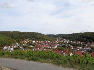 Blick auf die unterfränkische Weinbaugemeinde Ramsthal. – Foto: Dieter Warnick