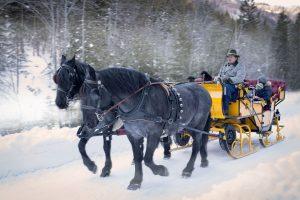 Mit der Kutsche durch den verschneiten Salzburger Lungau fahren – ein nicht alltägliches Erlebnis. – Foto: Ferienregion Salzburger Lungau