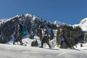 Geführte Wanderungen: Auf leisen Sohlen geht es zu den schönsten Plätzen der Region. - Foto: Wildschönau Tourismus