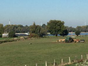 Frachtschiff in niederrheinischer Landschaft.