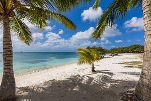 Auf Aruba gibt es kein schlechtes Wetter – ein wahres Urlaubsparadies. – Foto: Aruba Tourism Authority